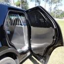 Platform SUV 2014 (3)